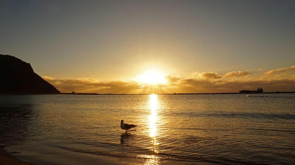 Der Morgen eines heißen Tages auf Teneriffa
